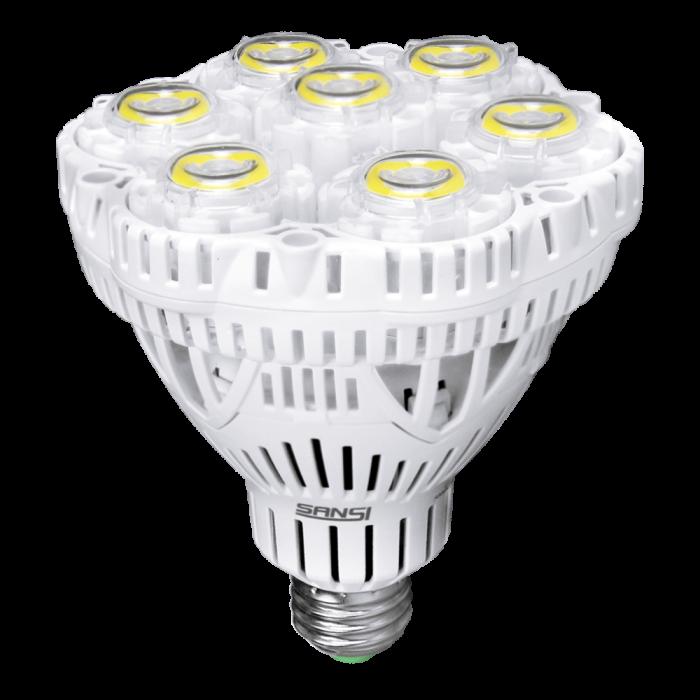 Br30 40W LED Bulb