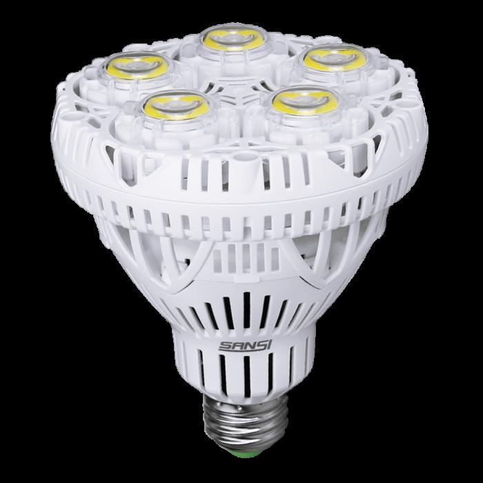 Br30 30W LED Bulb (5000K)