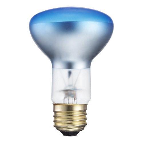 Philips 415307 Agro Plant Light Br40 Food Light Bulb